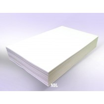 Blank Memo Pads 10 Pads 11 x 17