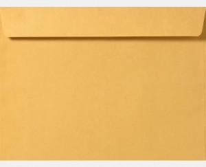 6 x 9 Booklet  Brown Kraft Envelopes Blank